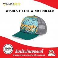 Sunday Afternoons - Wishes To The Wide Trucker